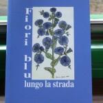 Fiori blu lungo la strada - Alfonso Cappa