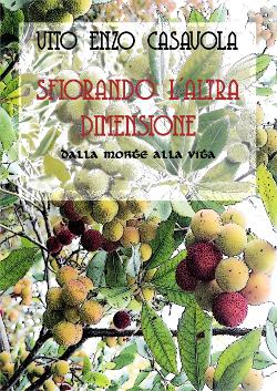 Sfiorando l'altra dimensione di Vito Enzo Casavola