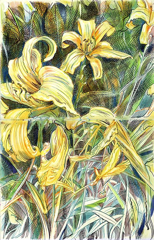 Disegni Botanici 02