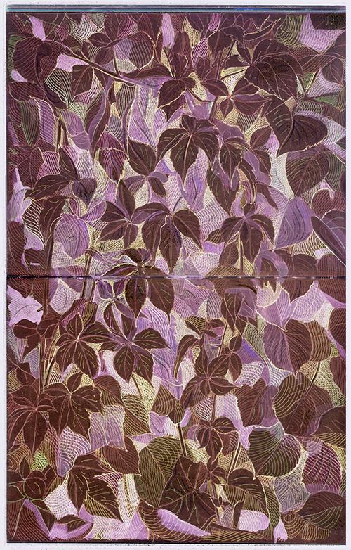 Disegni Botanici 06