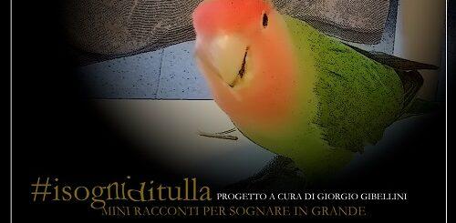 I sogni di Tulla